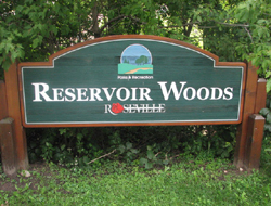 Reservoir Woods